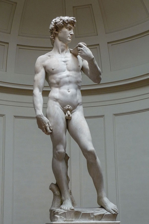 The Statue of DavidMichelangelo1504